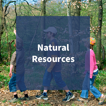 Link to Natural Resources Activities